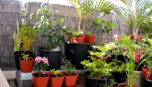 jardin balcon appartement