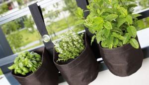 pots de fleurs en tissu pour plantes aromatiques