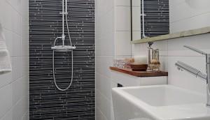 décoration petite salle de bain en longueur